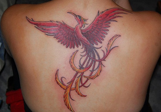 newest-phoenix-tattoo