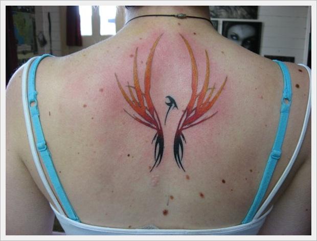 coloured phoenix 2