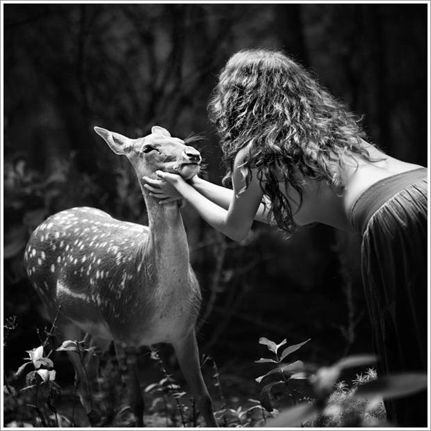 Beautiful Wild Life Photograpphy (30)